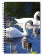 Serenade Of  Love Spiral Notebook