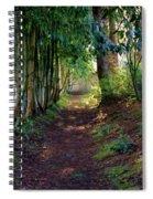 Serene Garden Path Spiral Notebook