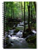 Serene Greenbrier Area Stream  Spiral Notebook