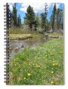 Serene Stream Spiral Notebook