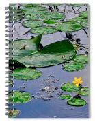 Serene To The Extreme Spiral Notebook