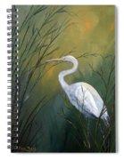 Serenity Spiral Notebook