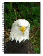 Serious Eagle Eye Spiral Notebook