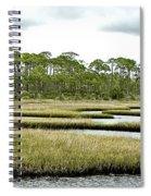 Serpentine Waters Spiral Notebook
