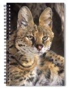 Serval Portrait Wildlife Rescue Spiral Notebook
