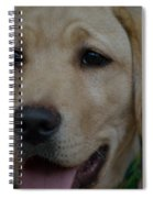 Service Dog In The Making Spiral Notebook