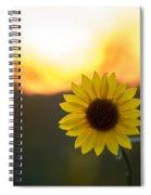Setting Sun Flower Spiral Notebook