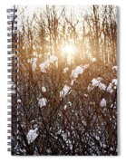 Setting Sun In Winter Forest Spiral Notebook