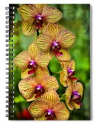 Seven Blooms Spiral Notebook