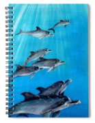Seven Dolphins Spiral Notebook