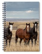 Seven Horses On The Range Pan Spiral Notebook