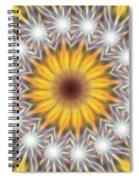 Seven Sistars Of Light K1 Spiral Notebook
