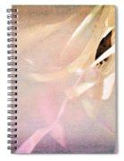 Shabby Chic Ballet I Spiral Notebook