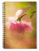 Shabby Chic Rose Print Spiral Notebook