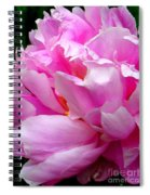 Shabby Peony Spiral Notebook