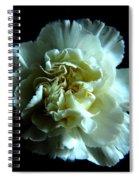 Shades Of Black Spiral Notebook
