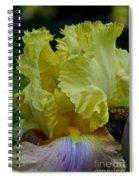 Shades Of Iris Spiral Notebook