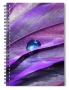 Shades Of Purple Spiral Notebook