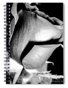 Shades Of Rose Spiral Notebook