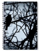 Shadow Among The Shadows Spiral Notebook
