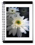 Shadow Dancer Spiral Notebook