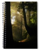 Shadow Dreams Spiral Notebook