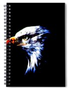 Shadow Eagle Spiral Notebook
