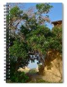 Shadows Of Desert Spiral Notebook
