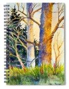 Shadow Patterns II Spiral Notebook