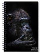 Shadow Series Three Spiral Notebook