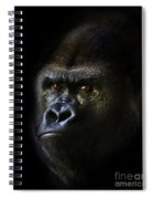 Shadow Series Two Spiral Notebook