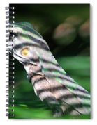 Shadow Stripes Spiral Notebook
