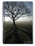 Shadow Tree Spiral Notebook