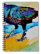 Shadowland Visitor Spiral Notebook