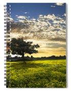 Shadows Spiral Notebook