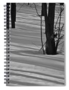 Shadows In Boyertown Park Spiral Notebook