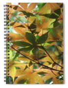 Shadows Of Maple  Spiral Notebook