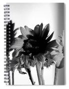 Shadows Of Spring Spiral Notebook