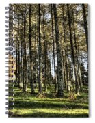 Shadows Of The Larch Forest Sunset No2 Spiral Notebook