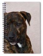 Shady 2 Spiral Notebook