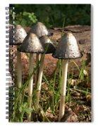 Shaggy Ink Cap Spiral Notebook