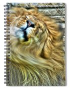 Shake It Off Lazy Boy At The Buffalo Zoo Spiral Notebook