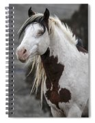 Shaman Portrait Spiral Notebook
