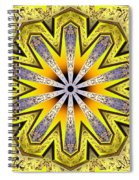 Shamanic Dreams Spiral Notebook