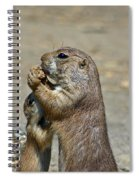 Sharing Spiral Notebook