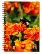 Sharing The Nectar Of Life 02 Spiral Notebook