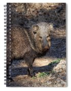 Sharing The Trail Spiral Notebook