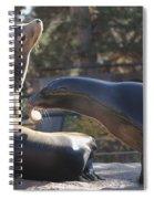 Sharing Spiral Notebook