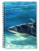 Shark In Depth Spiral Notebook