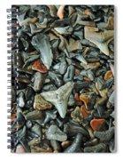 Sharks Teeth 2 Spiral Notebook
